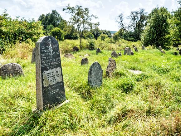10a. Cmentarz żydowski w Krynkach.