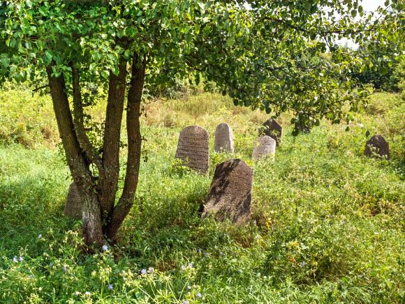 10b. Cmentarz żydowski w Krynkach.